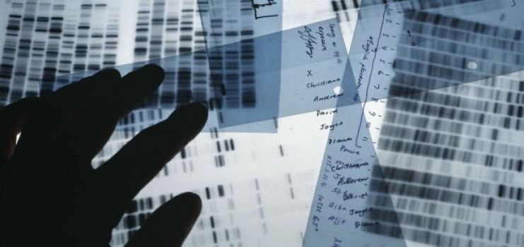 forensicdnaanalysis1-1054a6ca6a