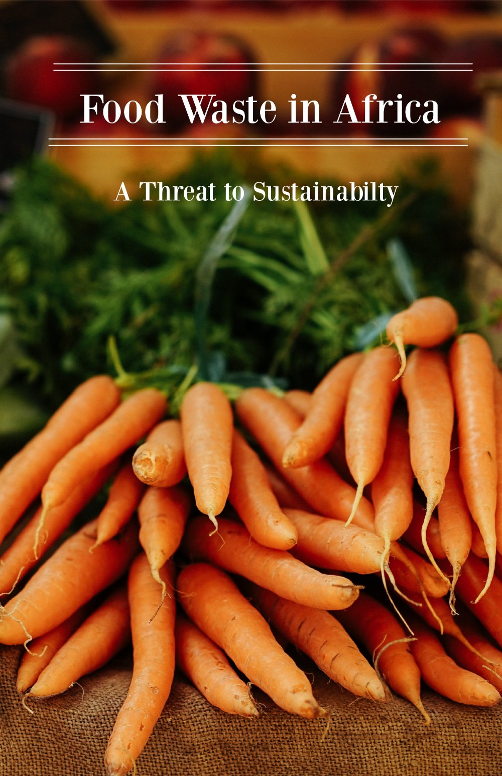 Reducing food waste in Africa is critical to improving food availability, achieving food security, and reducing stress on natural resources.