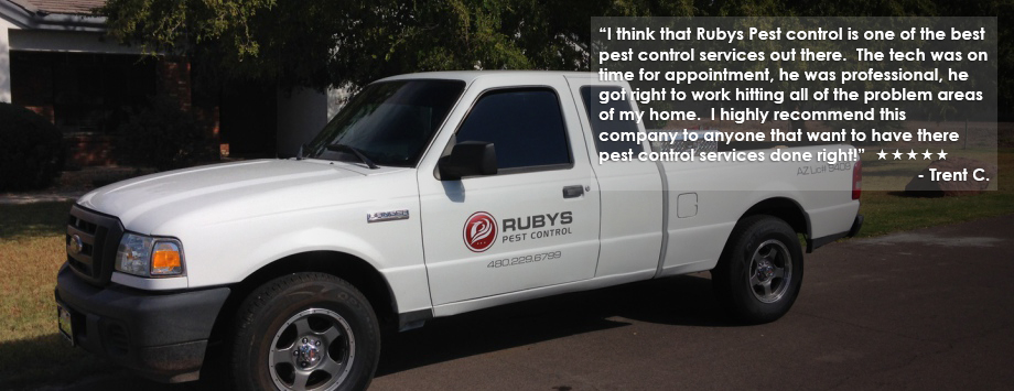 rubys truck with testimonial text
