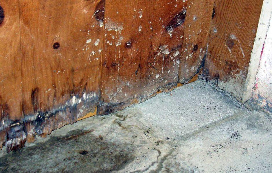 wet basement waterproofing toronto