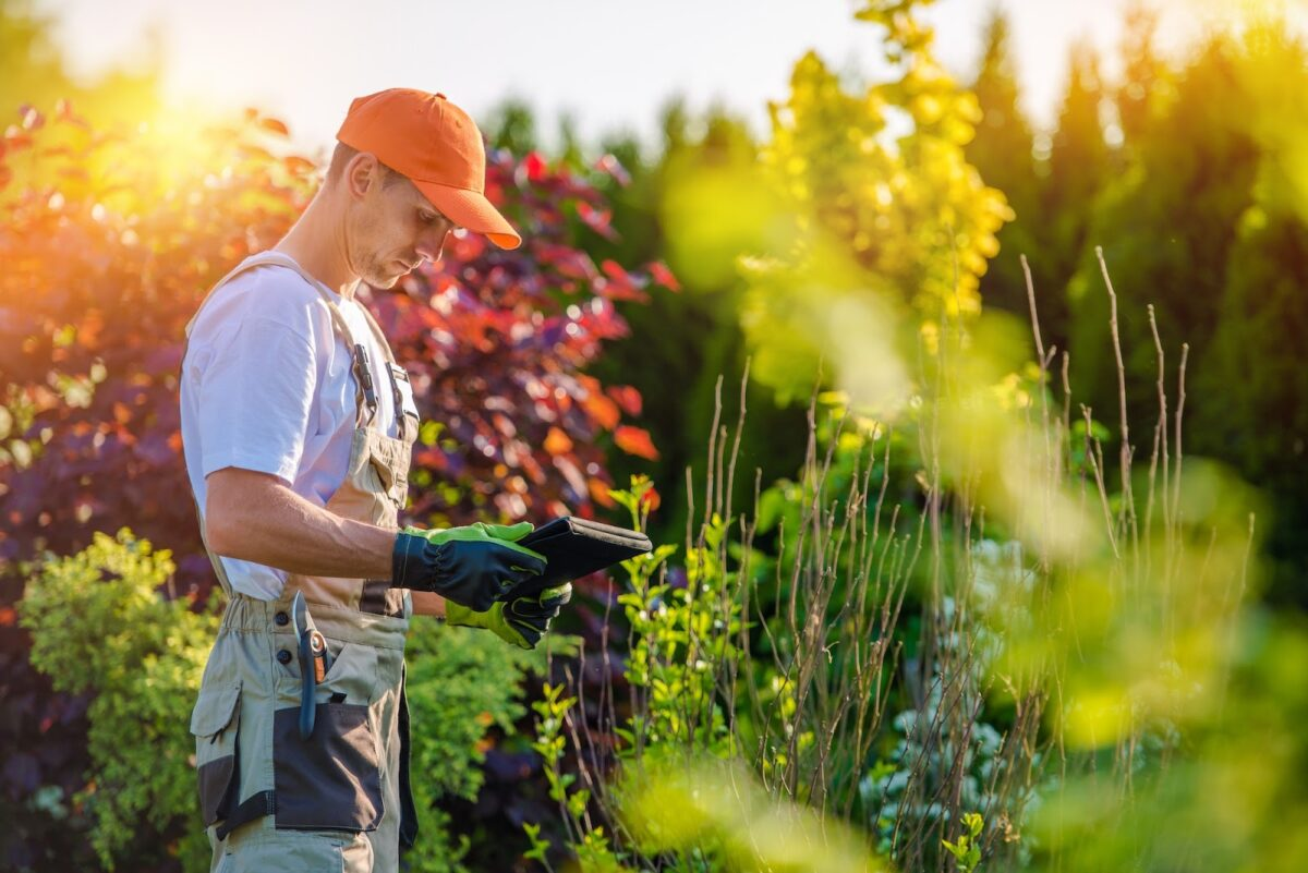 Landscaper looking at flowers in an industrial space