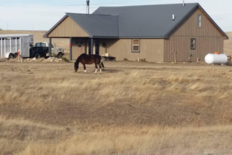 rustic-ranch-loding-acreage-buffao-wy
