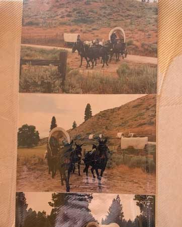 wagontrain-lodging-buffalo-wy