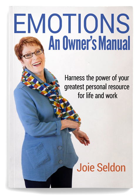 emotions-an-owners-manual-by-joie-seldon-website