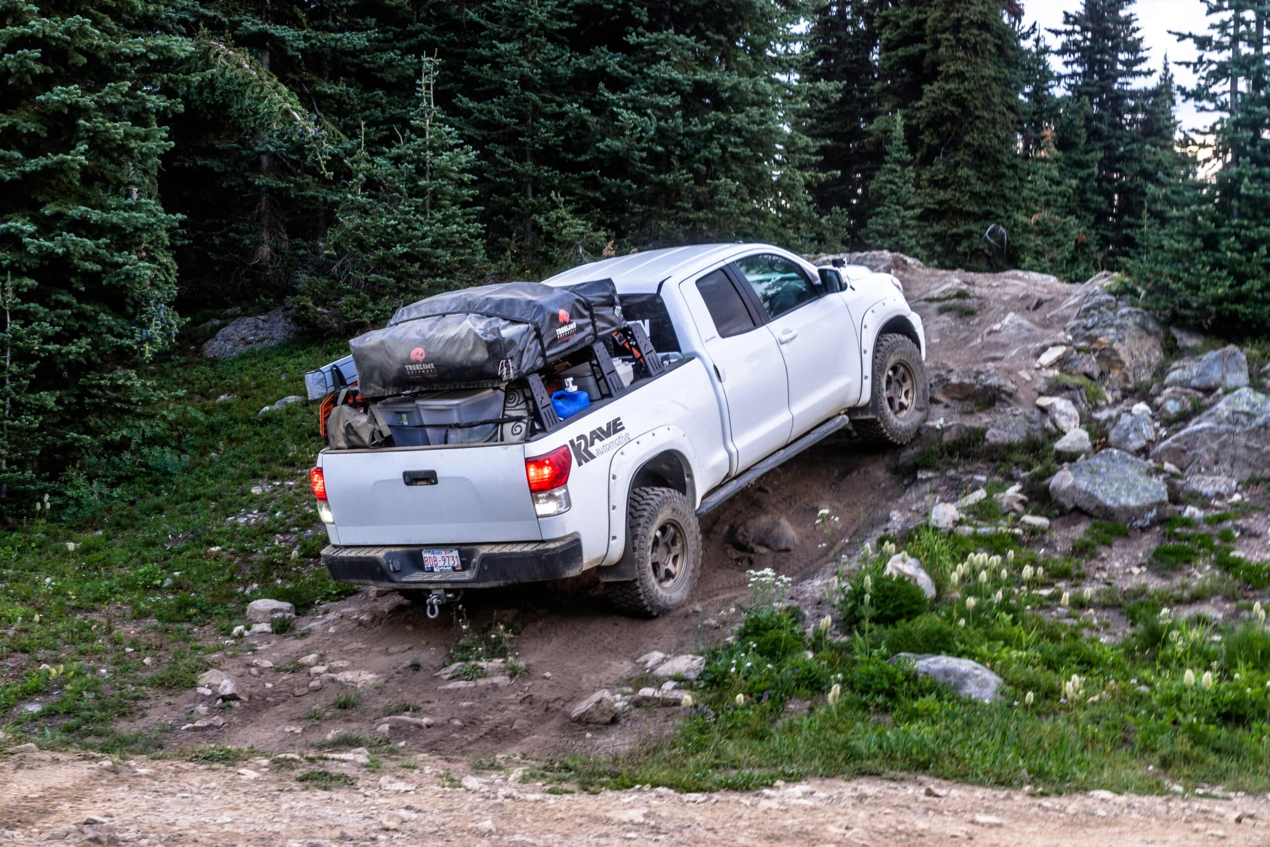 WHIPSAW TRAIL 2018-00251