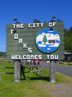 A Night in Forks
