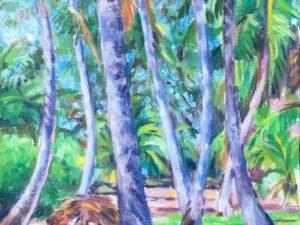Coconut jungle 2017