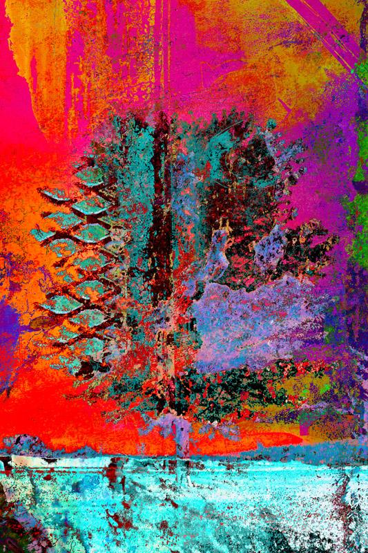 Fire Tree - Ari Rosenthal Fine Art