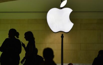 Tech Companies File Briefs to Support Apple's Privacy Fight