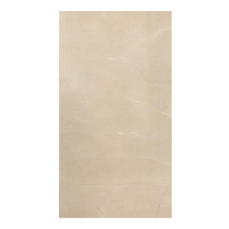 Grande Stylos Adriano Light Grey : Polished Granito Tile 60.0×120