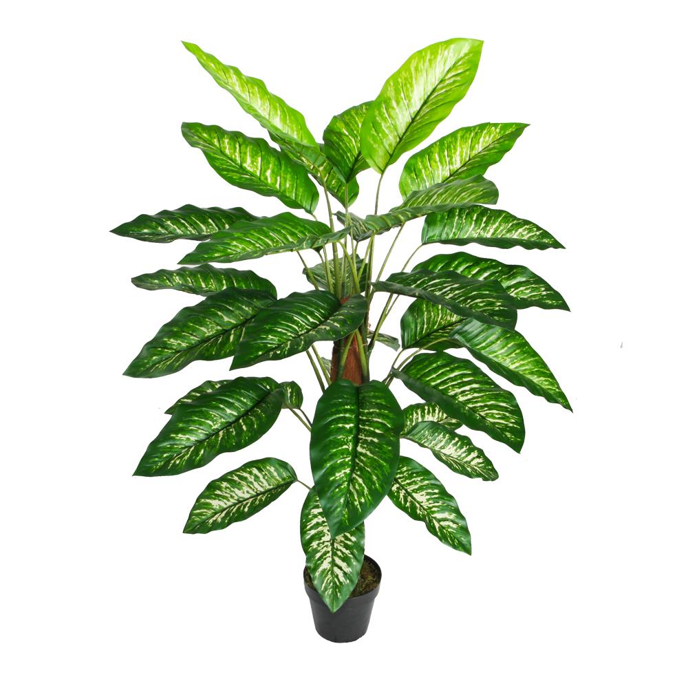Dieffenbachia Decorative Potted Flower: 120cm 1
