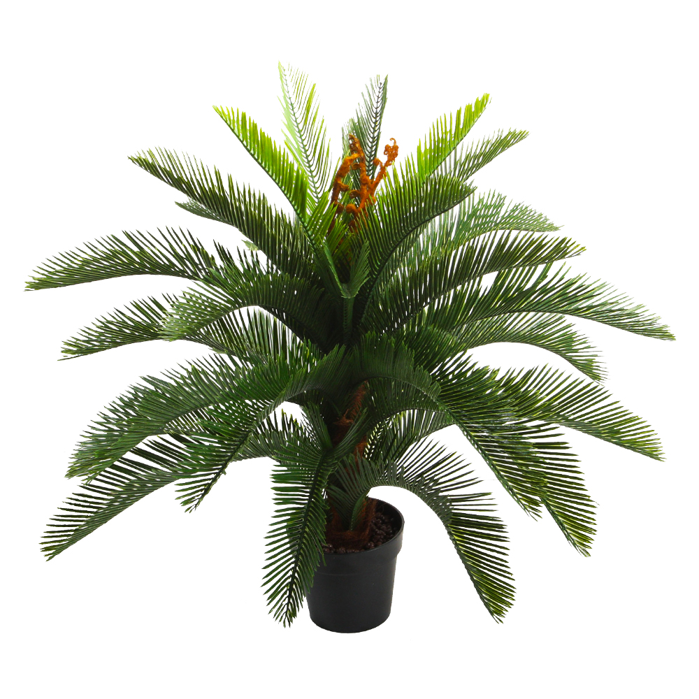 Cycas Decorative Potted Flower: 100cm 1