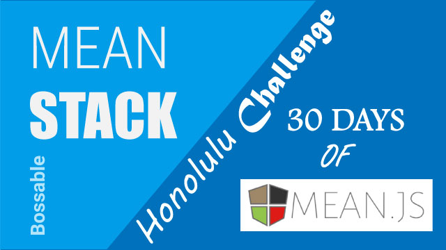 The 30 Day MEAN Stack Honolulu Challenge