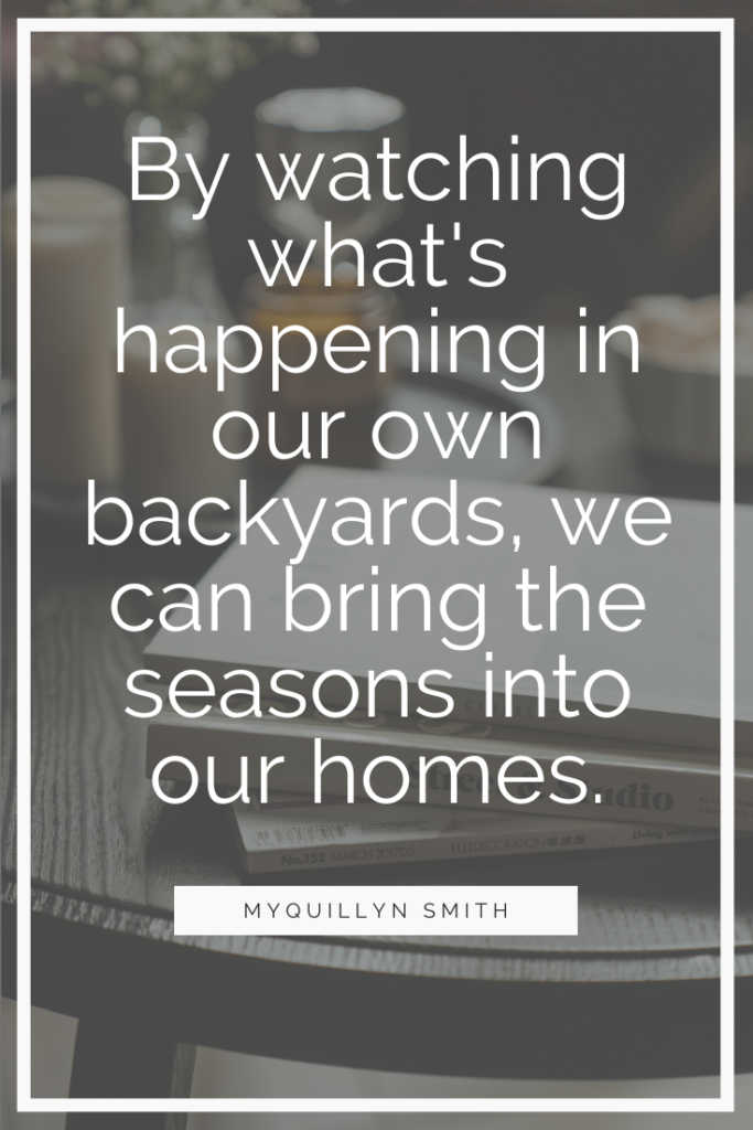 by watching what's happening in our own backyards, we can bring the seasons into our homes.