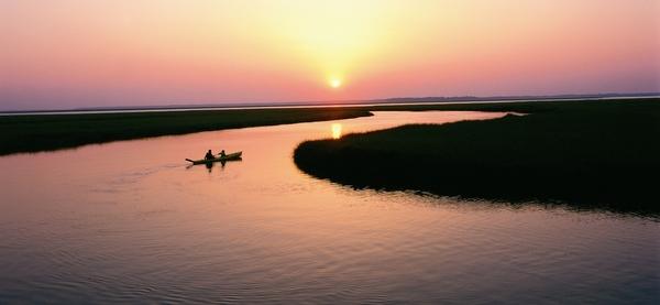 Sunset Kayak tour from Kayak Amelia, kayaks paddling in marsh during sunset