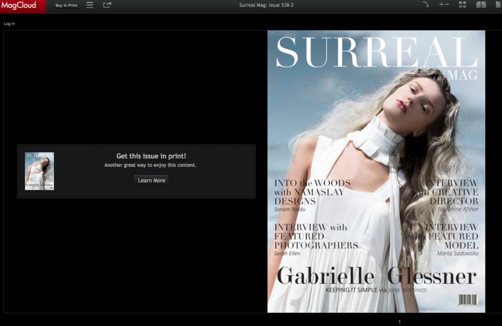 svperdvperfly surreal magazine brittany borders fashion stylist