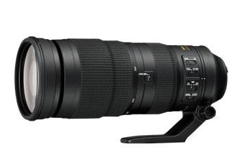 Telephoto Lens for wildlife