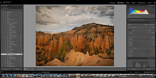 Using Collections in Adobe Lightroom Classic