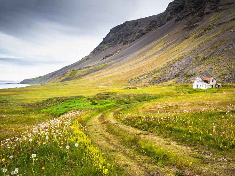 Hellnar summer Westfjords Photography Wrokshop Jansen Photo Expeditions