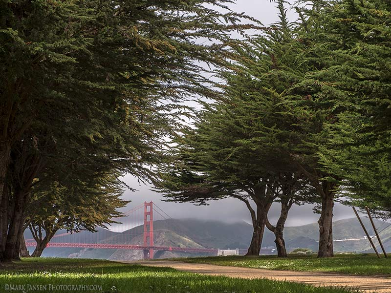San Francisco Private Photography Workshop
