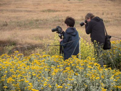 Private Photography workshop on the Central Coast of California