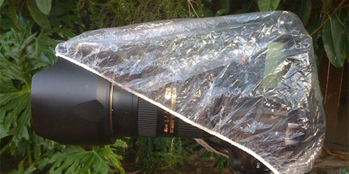 Preparing for wet weather photography