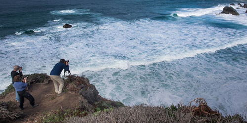 What to Expect on a Photography Workshop
