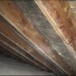 Attic Mold Remediation Before - Encapsulation Method