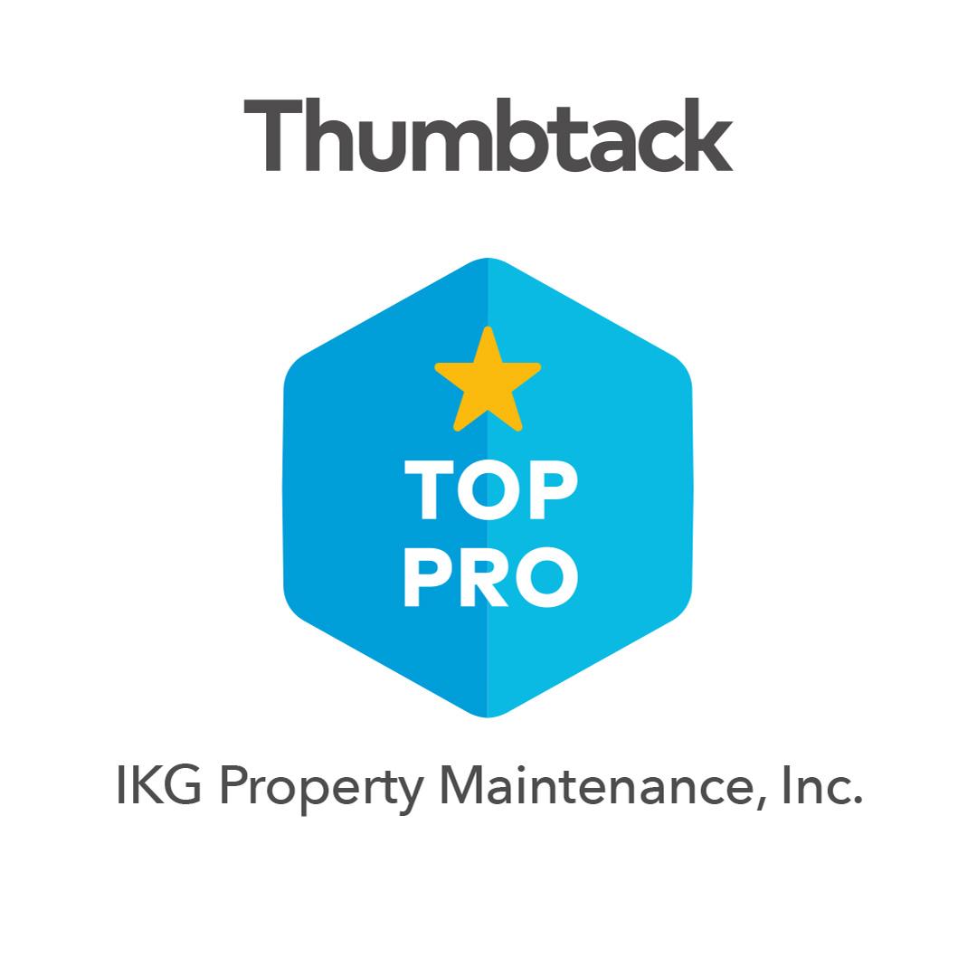 Top-Pro-Badge 2018