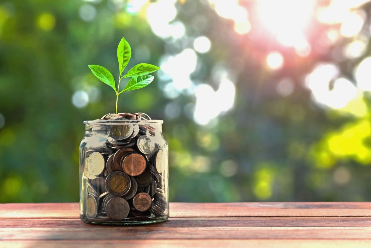 The Most Crucial Financial Acts Your Business Should Perform