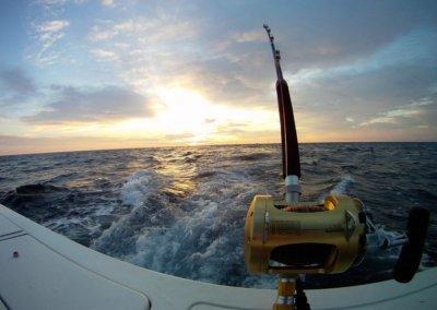 High-end Fishing Gear
