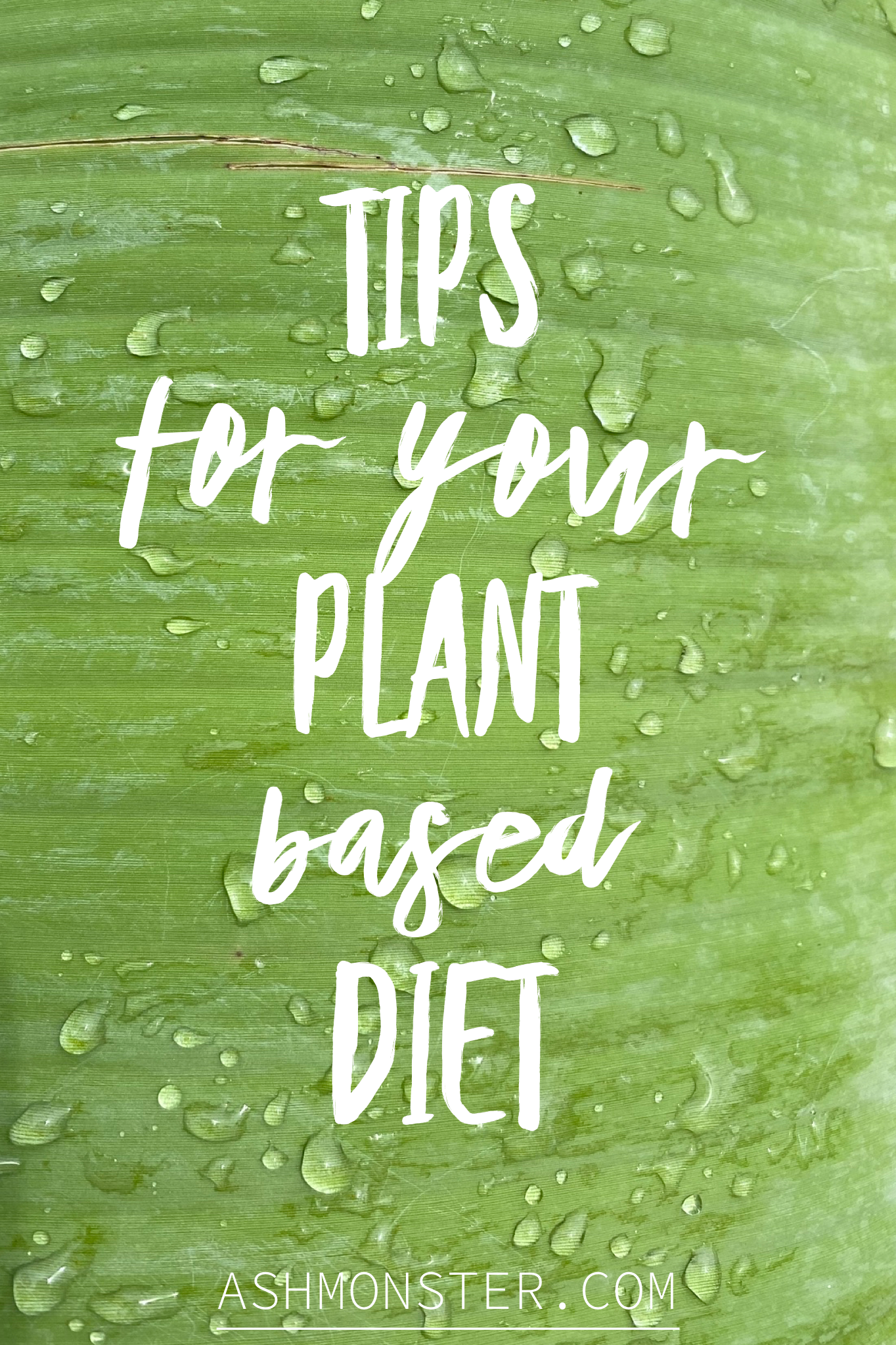 banana leaf with text tips for your plant based diet from ashmonster.com