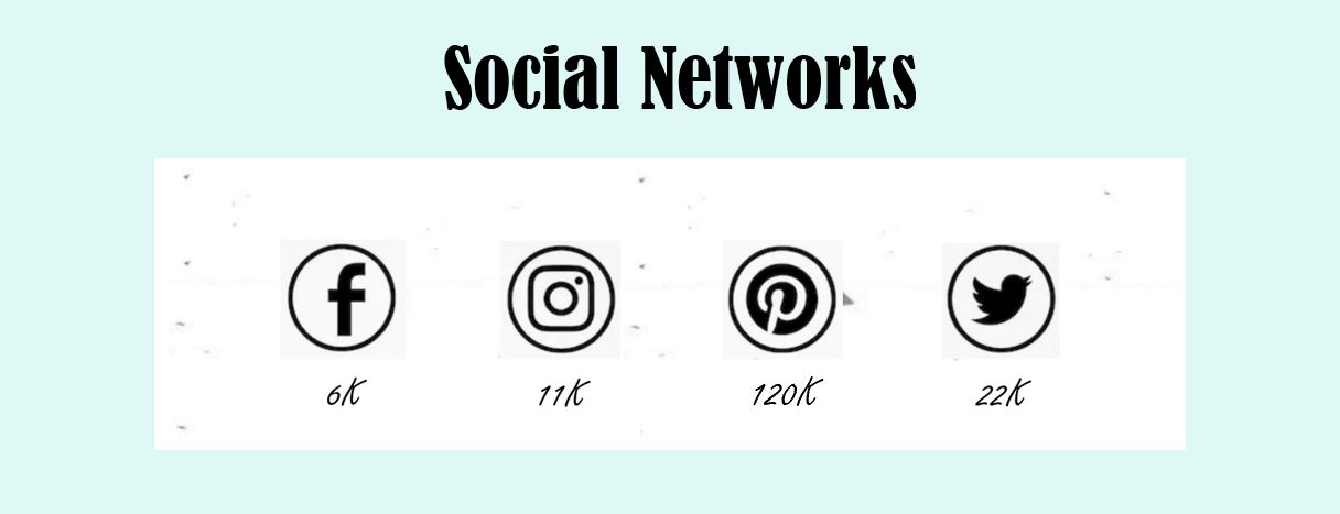 ashmonster.com social media stats