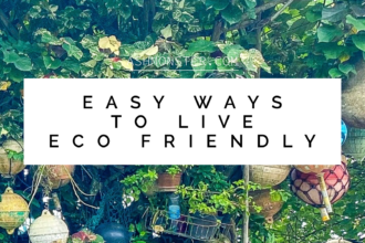 Easy ways to live eco friendly by ashmonster.com