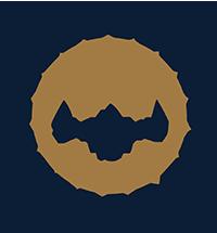 async-logo