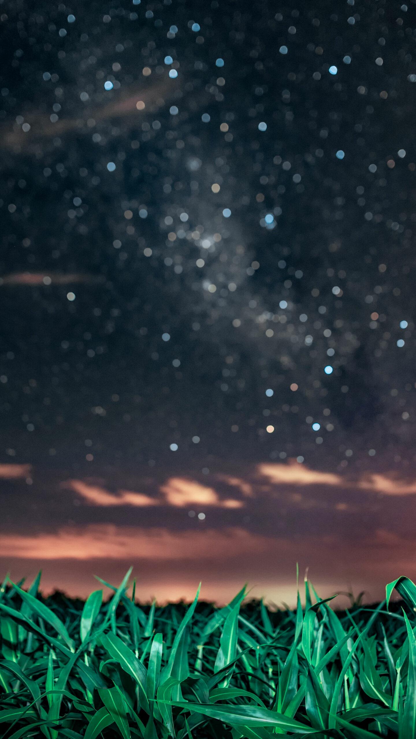 Fondo de pantalla Night Lights por Emilio Küffer