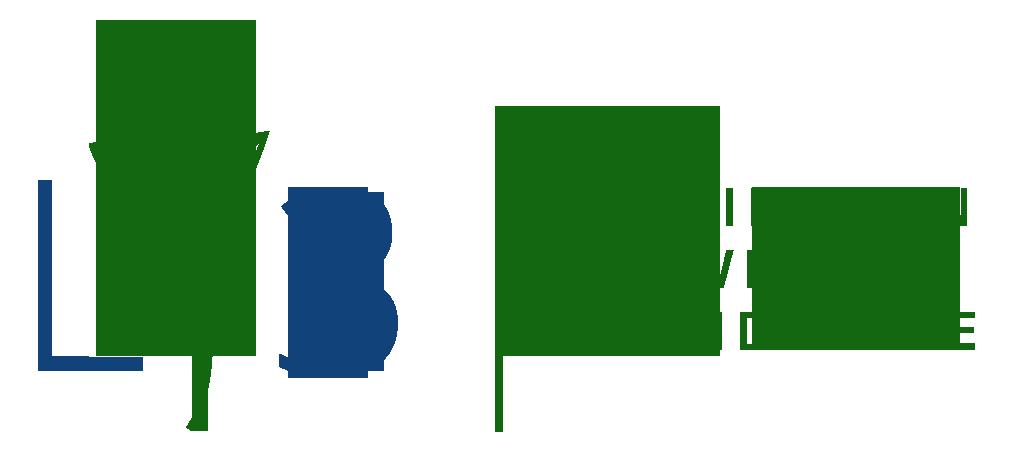 Lexington Lawn & Landscape