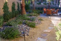 desert-landscaping-trees