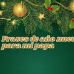 Imágenes con Frases de año nuevo para mí papa
