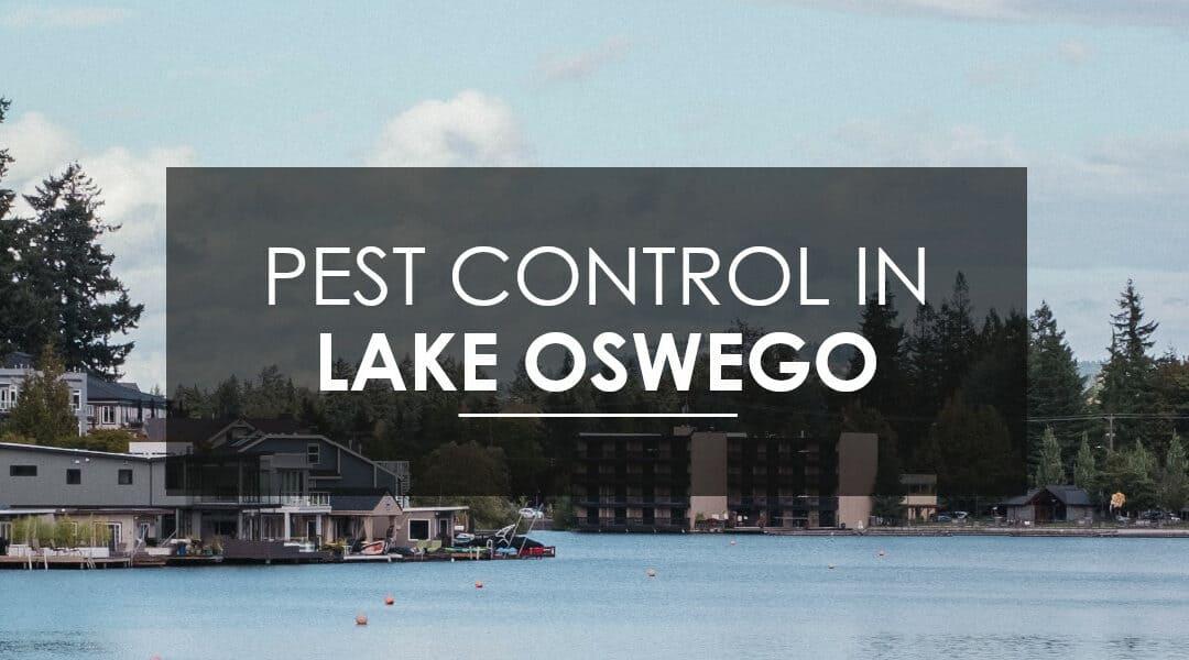 Lake Oswego Extermination Services