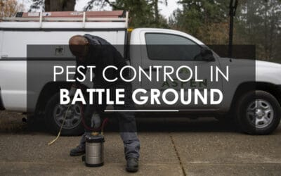 """Are the Pests Going to Come Back?"" Why Battle Ground Loves the Aspen Pest Control Home Protection Plan"