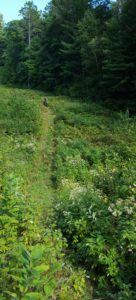 FATbike Primitive Trail in Cable: Advanced Guided Tour