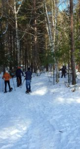 Group Snow Bike and Snowshoe