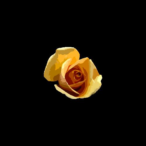 RWA Rose 2