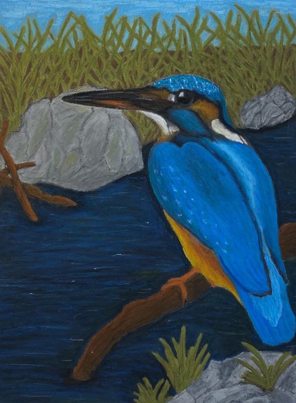 If I were a bird (Oil Pastel)