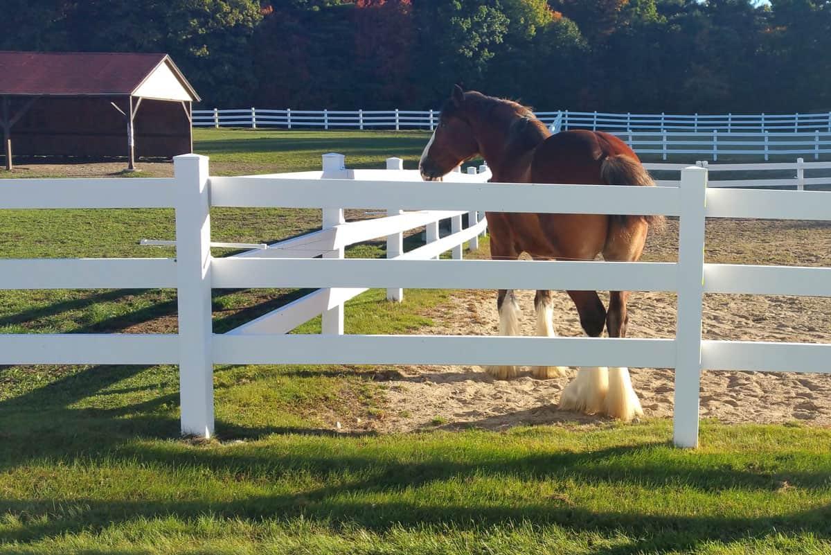 horse fences ranch san diego