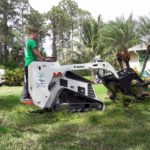 SaveMore Tree Service Land Clearing Palm Beach, Loxahatchee, Royal Palm, Wellington