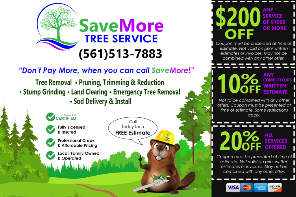SaveMore Tree Service Flyer Coupons Palm Beach