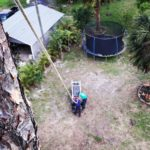 Best Tree Removal and Tree Trimming in Loxahatchee