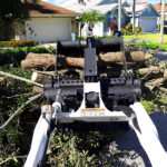 Storm Preparation and Cleanup in Loxahatchee, Wellington, Royal Palm Beach and Palm Beach County - SaveMore Tree Service